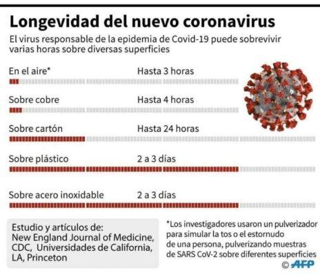 Supervivencia del coronavirus Foto AFP