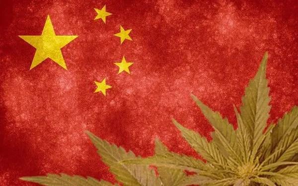 席卷中国的大麻狂潮