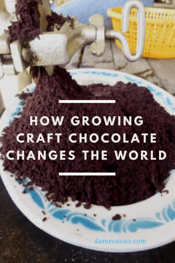 How Growing Craft #Chocolate Changes The World | #learning #industry