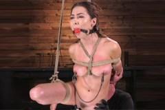Mučená Melissa Moore – BDSM porno