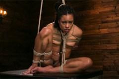 Mučená ebony kráska Kira Noir – BDSM porno