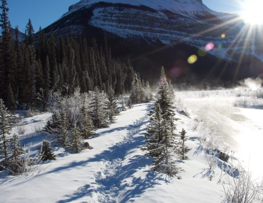 5 Best Hikes in Jasper National Park