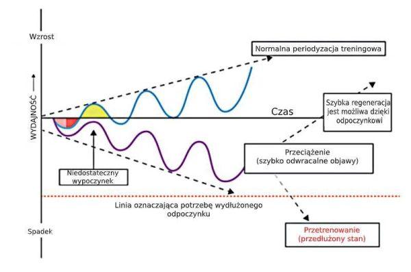 Markery laboratoryjne przetrenowania