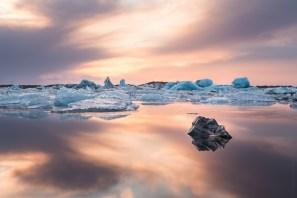 Photographe Illustration - reportage nature