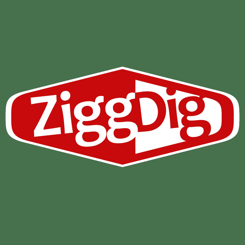 ZiggDig