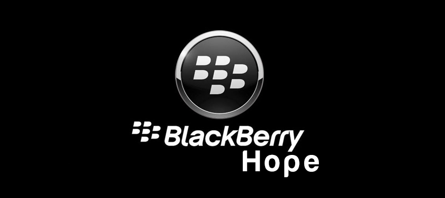 My Great Blackberry Hope