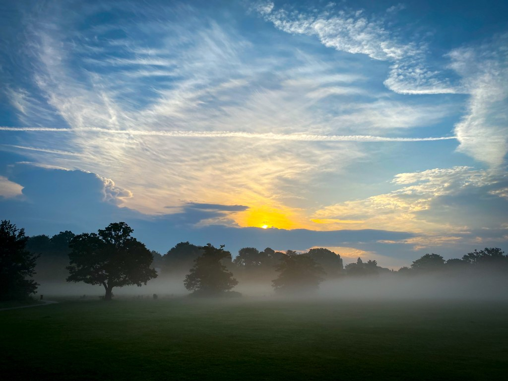 Knowle Park after the storms