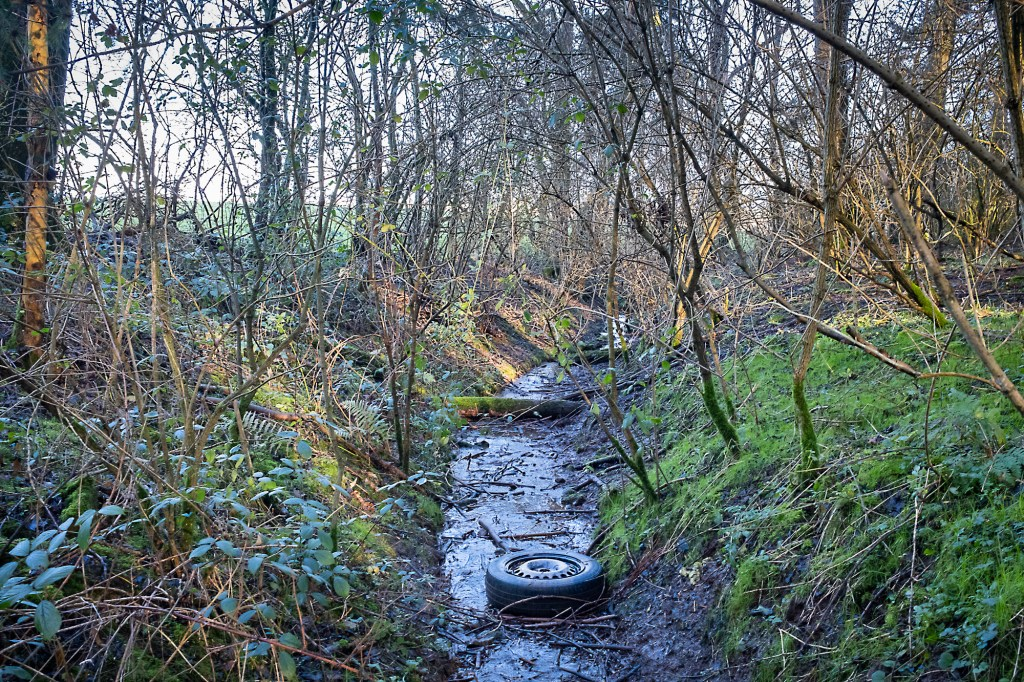 A stream in the hollow (with discarded tyre)