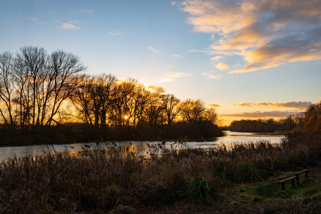 The endless lake of Coombe Abbey Country Park