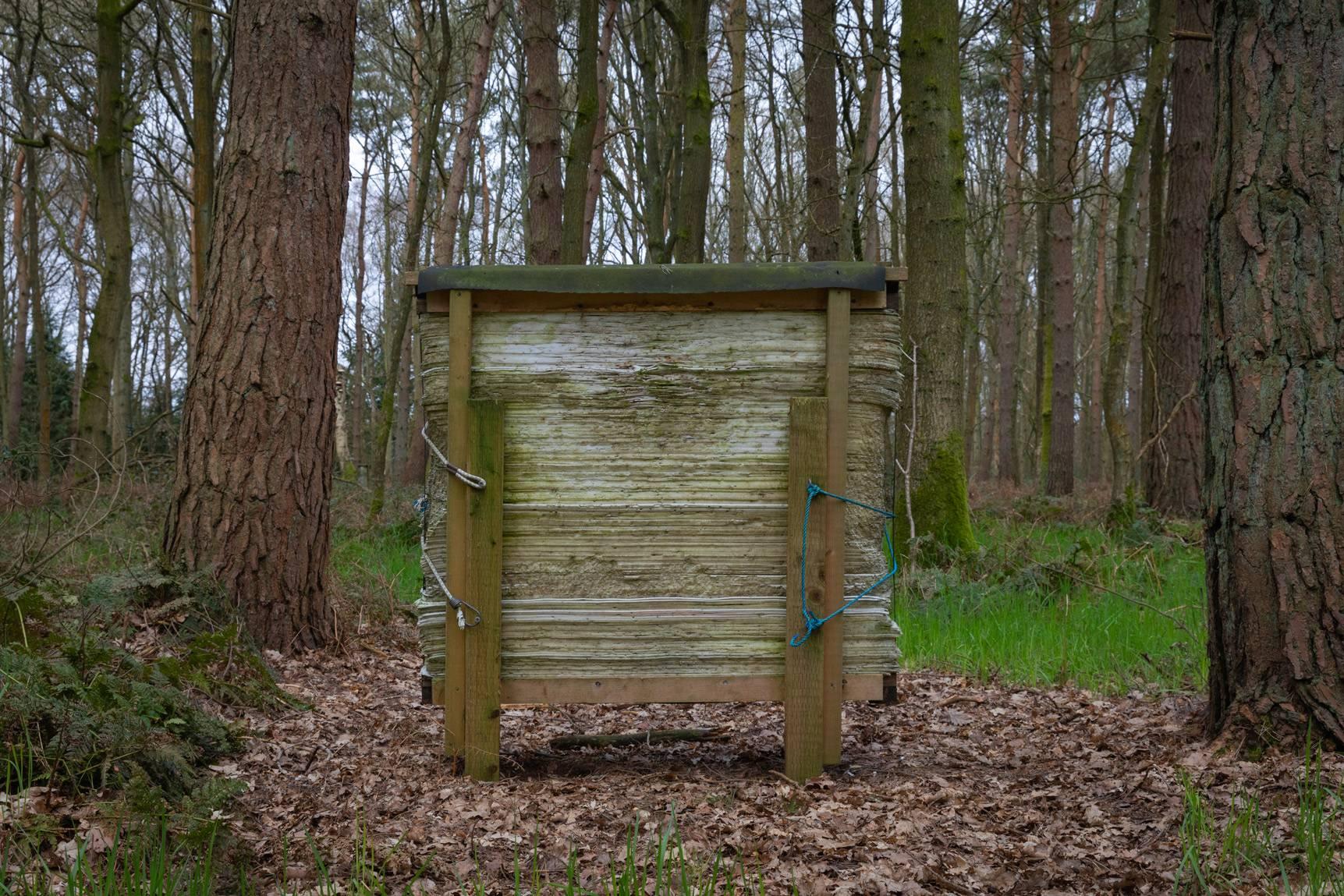Hay Wood March 2021