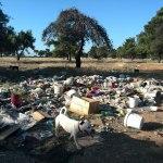 Inicijativa za inspekcijski nadzor i sanaciju divlje deponije na Ćemovskom polju