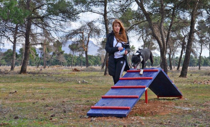 Dobrodošli, ali park na Ćemovskom nije park za sve podgoričke pse