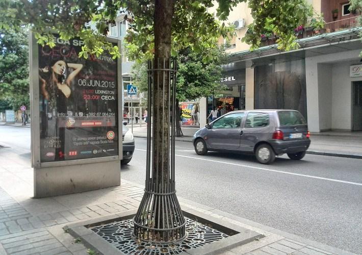 Ceca stigla u Crnu Goru, posadiće višnju na Ćemovskom