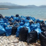 Šta radimo prirodi: Kubici smeća uklonjeni sa plaže Trašte na Luštici