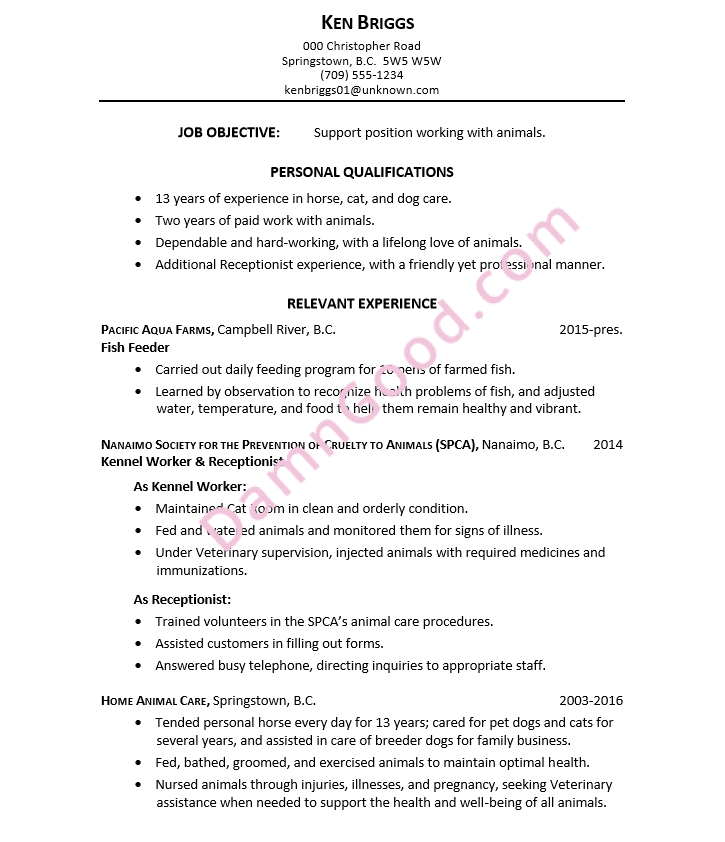 Resume For A Support Position Working With Animals  Resume Experience