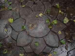 A concrete lotus