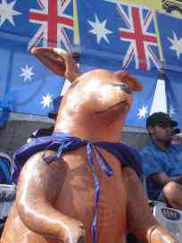 Skippy keeping watch over our highly protected shaded area
