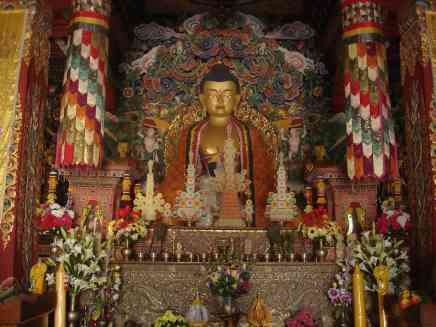 Buddha in one of the many temples in the area built by Buddhist nations from around the world