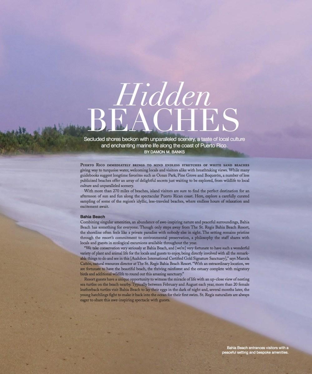 Bespoke_BahiaBeach_Summer14_1