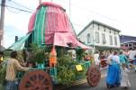 2013 Pahoa Parade 308