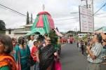 2013 Pahoa Parade 310