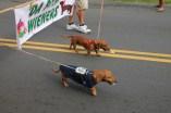 2013 Pahoa Parade 337
