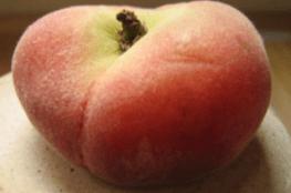 Dampfwelten Aromentest - von Dampfern für Dampfer! PfiBi / Schokophino / Peach X-Mas / Apfelstrudel / Green Love