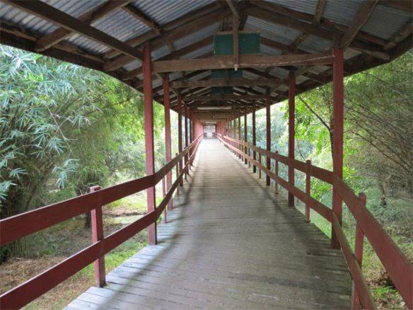Wooden Bridge at Panditarama Forest Meditation Center