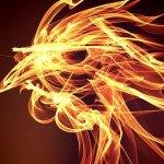Петел – Китайски любовен хороскоп