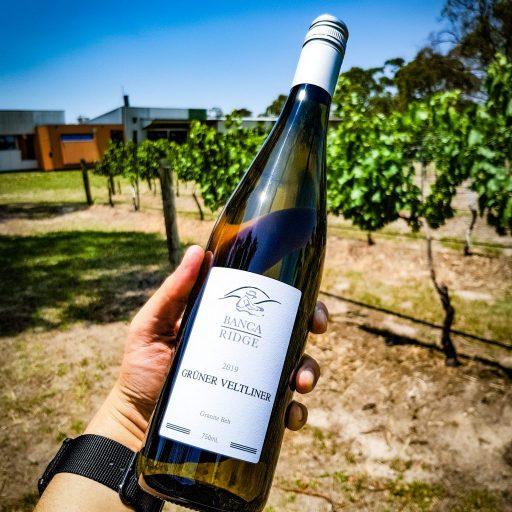 Banca Ridge 2019 Gruner Veltliner at the Queensland College of Wine Tourism