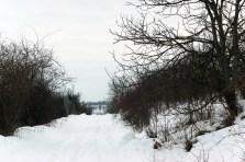 iarna an bistrita