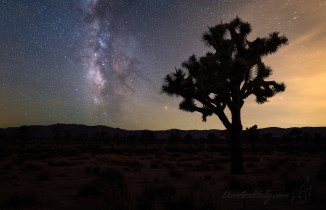 The Milky Way Over Joshua Tree – Part 2