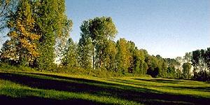 Parque Rio Strone