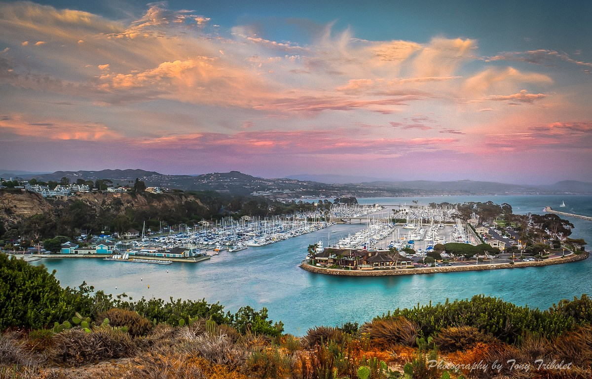 Image result for dana point