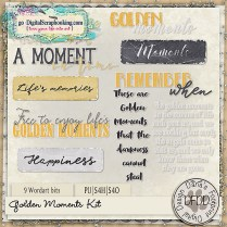 dfdd_goldenmoments_wa