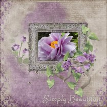 tranquility_phyllis2