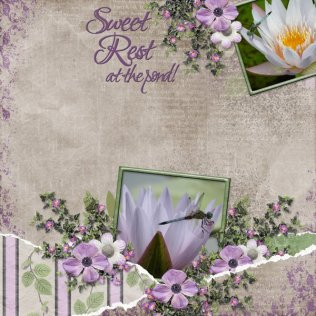 tranquility_redone_phyllis1