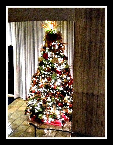 Good Bye Christmas Tree, tree, decor, recycle, clean, holidays, happy new year, dana vento, diy