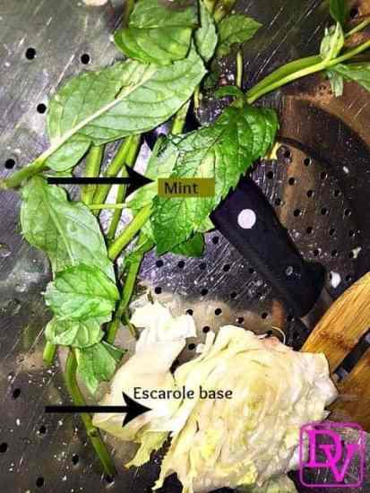 Godzilla Fungus, Recipe, Fresh, Garden, Escarole, Mint, Bread Crumbs, Bake, Boil, Garlic, Food, Foodie, Food Blogger, Dana Vento, Escarole Recipe, cooking, kitchen, Italian, Italian recipe, generational, food blog, Godzilla Fungus Recipe