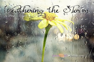 Weathering the Storm - a new-adult short story written by Danaye L. Shiplett.