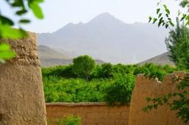 The scenery around Mizan is great!
