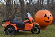 The Yamal & the pumpkin