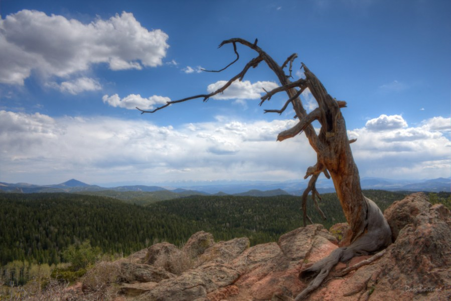 Old Man on the Mountaintop landscape photo of Mueller State Park Colorado by Dan Bourque