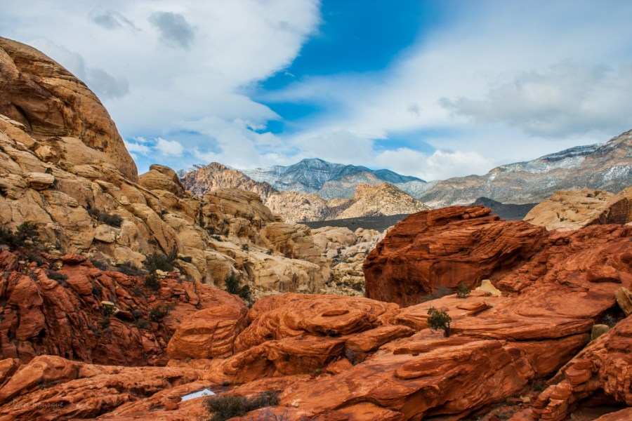 Red Rock Striations landscape photo of Red Rock Canyon Nevada by Dan Bourque