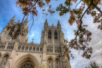 Autumn Branches over the Cathedral photo of National Cathedral Washington DC by Dan Bourque