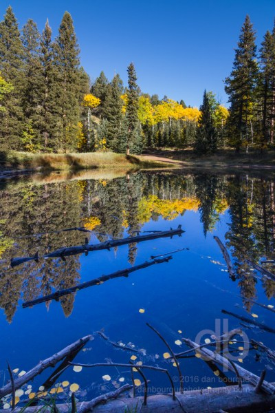 Deep Blue Mirror landscape photo by Dan Bourque