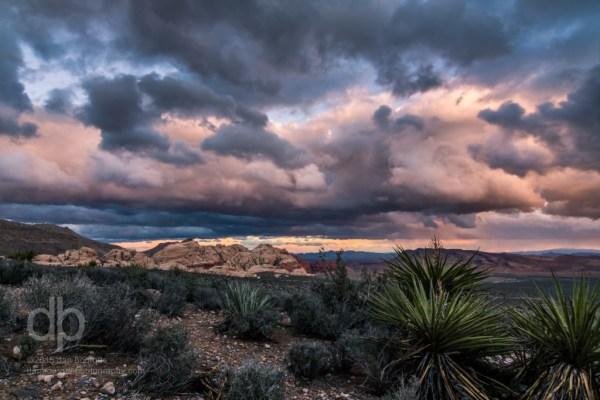 Gathering Storm over the Desert landscape photo by Dan Bourque