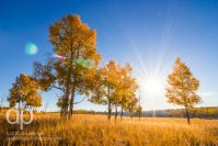 Sun Over Fall Fields landscape photo by Dan Bourque