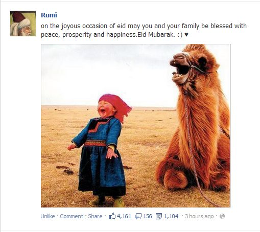 Joyful child and camel