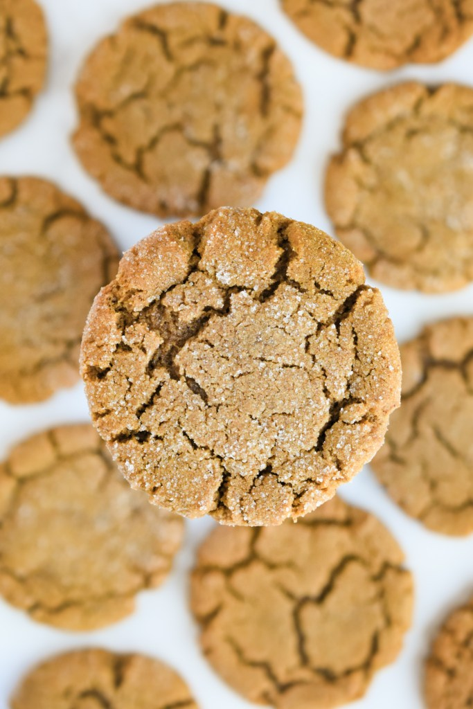 Close-up of a molasses cookie
